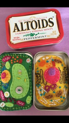 Compare and contrast plant and animal cell models that fit into an Altoids tin. Constructed from felt, beads, floss, and a bit of polyester batting. Plant Cell Project, Cell Model Project, Animal Cell Project, 3d Cell Model, Plant Cell Model, Science Fair, Science Experiments, Science Cells, Life Science