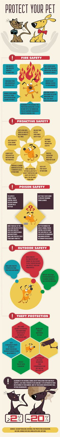 Keep your pets safe all the time! #DogHealth #ProtectDogs #DogSafety #Pets #DogTips #PetSafety