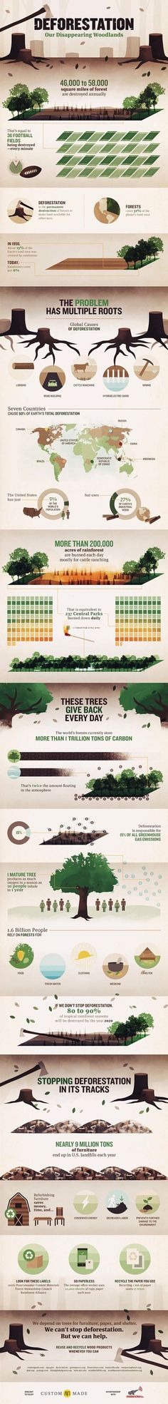 Earth: ~ Deforestation: Our Disappearing Woodlands. You've Heard About This Problem With Our Trees, But Do You Really Know How Big It Is? Environmental Education, Environmental Science, Environmentalist, Do You Really, Save The Planet, Earth Science, Global Warming, Change The World, Mother Earth