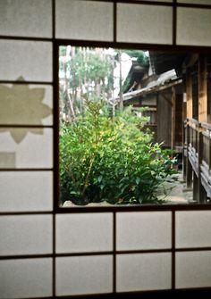 空間。それを彩るのは、人。いつでも笑顔で居たいものです。勿論、あなたも。  #japan  #nara  #kuukan  #hito  #egao #anata  #aozora  #film  #filmcamera  #canon  #DEMI  #EE17