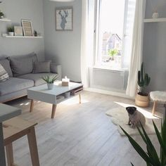 Cool calm and collected. A tranquil living space created by @bibieaa