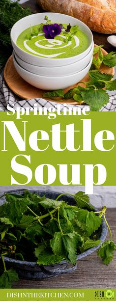 Stinging Nettle is a nutritious and delicious addition to traditional Potato Leek soup. Use foraged greens to turn this classic soup into a new Springtime tradition. #NettleSoup #StingingNettleSoup #foraging #soup Cubed Potatoes, Potato Leek Soup, Healthy Soups, Hot Soup, Delicious Dishes, Chowders, Original Recipe