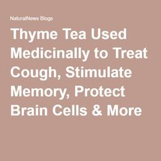 Thyme Tea Used Medicinally to Treat Cough, Stimulate Memory, Protect Brain Cells & More