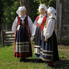Bild från boken Ståten och nyttan. Värend, Småland Folk Costume, Costumes, Norwegian Clothing, Folk Clothing, Folk Dance, Nordic Design, People Of The World, Traditional Outfits, First World