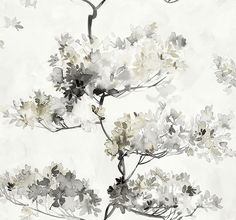 Ilderton Trees Wallpaper in Black and White by Carl Robinson for Seabrook Wallcoverings Floral Print Wallpaper, Watercolor Wallpaper, Tree Wallpaper, Pattern Wallpaper, Wallpaper Ideas, Closet Wallpaper, Black And White Dining Room, Modern Wallpaper Designs, Black And White Wallpaper