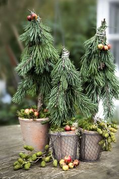 In this DIY tutorial, we will show you how to make Christmas decorations for your home. The video consists of 23 Christmas craft ideas. Natural Christmas, Green Christmas, All Things Christmas, Christmas Holidays, Christmas Crafts, Woodland Christmas, Rustic Christmas, Handmade Christmas, Outdoor Christmas Decorations