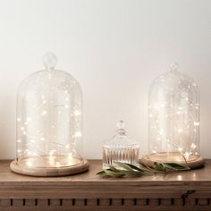 Factory Direct Sales Glass Cloche Glass Bell Jar with String Lights Led Led Fairy Lights, Jar Lights, Twinkle Lights, String Lights, The Bell Jar, Bell Jars, Diy Snow Globe, Snow Globes, Glass Domes