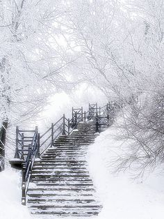Lost steps and paths...What a gorgeous photo!!