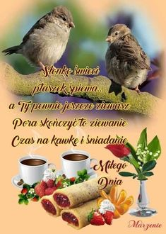 Good Morning, Humor, Pictures, Animals, Seasons, Bedroom, Kitchen, Pretty Animals, Bonheur