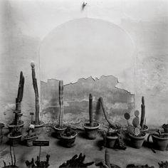 La Fundación MAPFRE, hôte de la plus grande collection de Graciela Iturbide - L'Œil de la photographie