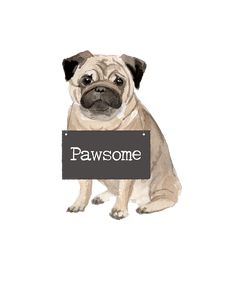 Adorable Pug with Pawsome Sign Soft Short Sleeve T-Shirt