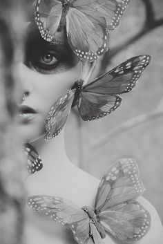 Monarch Proyect by K I R A, via Flickr