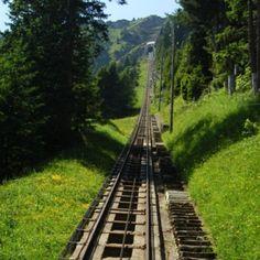 Wo ist die längste Treppe der Welt?   in der Schweiz Die Betriebstreppe neben dem Trassee der Niesenbahn ist mit 11'674 Stufen als längste Treppe der Welt im Guinness-Buch der Rekorde eingetragen. Einmal im Jahr ist sie begehbar: Anlässlich des Niesenlaufs, der 2009 zum 8. Mal stattfand.