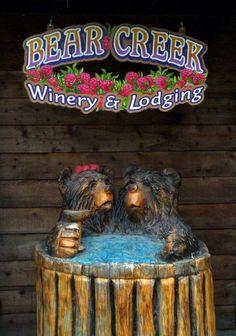 Wine tasting near #Homer #Alaska at Bear Creek Winery