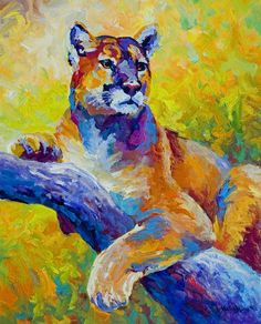 'Cougar Portrait I' Painting by Marion Rose