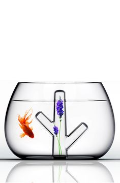 Fish bowl + floral vase