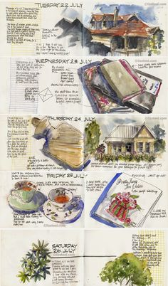This week: Starting Local Houses series. Big planning Session and an hour in the garden : Liz Steel