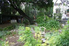 Backyard English Tudor, Santa Clara, Cottage, Backyard, Plants, House, Patio, Home, Cottages
