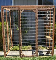 outdoor cat enclosure. This is 6' x 6' and costs about $600 incl. shipping and tax. I bet it's not that difficult to DIY, tho.