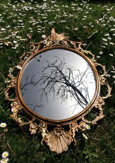 Artist unknown, shows the varying landscapes in the world, through use of mirrors, and their main thing in common is how all land is shaped by the elements.