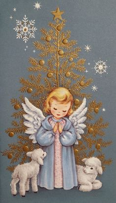angels & lambs
