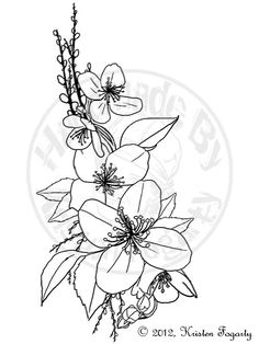 15 Mejores Imágenes De Flor De Jazmin Jasmine Flower Tattoos