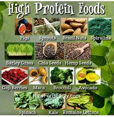 High protein non meat options