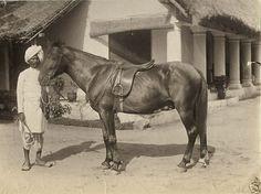 British India 1880