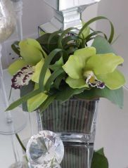 Orchids with Looped Grass in Glass Cube