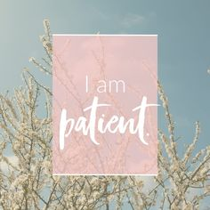 Mantra: I am patient. Click to choose your own positive affirmation to download or share.
