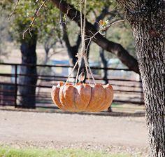 Pumpkin Bird Feeder