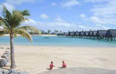 Sandy beach & Lagoon at the Marriott Momi Bay in Fiji 📷 Fiji, Album, Beach, Water, Holiday, Outdoor, Gripe Water, Outdoors, Vacations