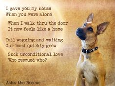 Discover and share Rescue Dog Poems And Quotes. Explore our collection of motivational and famous quotes by authors you know and love. I Love Dogs, Puppy Love, Cute Dogs, Awesome Dogs, Animal Quotes, Dog Quotes, Animal Signs, Friend Quotes, Rescue Dogs