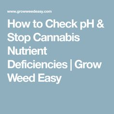 How to Check pH & Stop Cannabis Nutrient Deficiencies | Grow Weed Easy