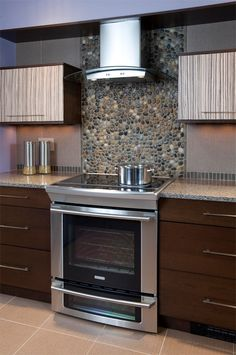 Unique and Exotic Ideas for Kitchen Cabinet Door Inserts | Kitchen Designs . com…