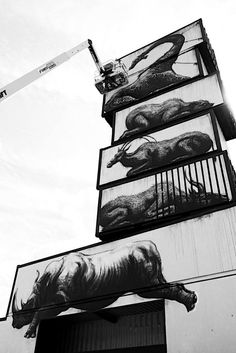 ROA - exihbition pour North West Walls to the Werchter Festival