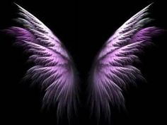 Angel Wings Graphics - Yahoo Image Search Results