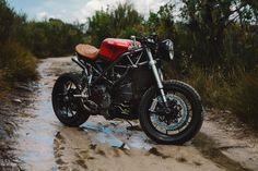 "we-are-stubborn: "" The Beast – Nico's Ducati 848 """