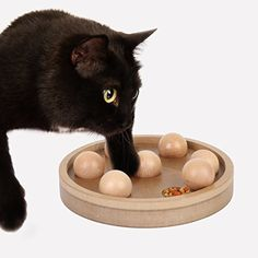 Interactive Fun IQ Puzzle for Dogs, Cats and Pets Food Treated Wooden Toy Game Jumbl http://www.amazon.com/dp/B01B6OCX1W/ref=cm_sw_r_pi_dp_U.2Zwb0M3J16P. To occupy kitty.