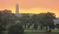 Located in Lake Wales, Florida, Bok Tower Gardens contains a tower that juts out from the surrounding hills.