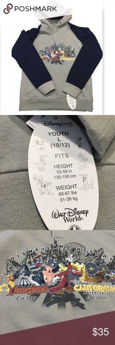 Disney Resorts Hoodie. Disneyland Resort hoodie. Button closure hoodie (no strings) features resort image on front Gray with blue sleeves. See pic for sizing. Disney Shirts & Tops Sweatshirts & Hoodies