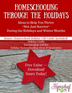 Free ezine: Homeschooling through the Holidays. Inspiration & encouragement for your homeschool, plus bonus gift guide! Christmas Gift Guide, Christmas Books, Christmas Projects, Independence Day Activities, Homeschool Curriculum, Homeschooling Resources, Christmas Activities, Learning Activities, Lesson Plans
