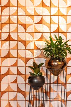 Create your own patterned feature wall with this 70's inspired terracotta 3 tone application. Combined with Rialheim Pot Plant Stands  #Ceramics #Reimagined #Tiles #WallTiles #Featurewall #Wallpaper  #terracotta #Design #DesignInspo #Interior #Design #InteriorDesign #Architecture #Potplantstand #MadeinSA #MadefromAfrica #DreamBelieveFly