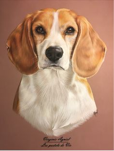 Are you interested in a Beagle? Well, the Beagle is one of the few popular dogs that will adapt much faster to any home. Art Beagle, Beagle Puppy, Animal Paintings, Animal Drawings, Pet Dogs, Dog Cat, Dog Artist, Puppy Drawing, Cute Beagles