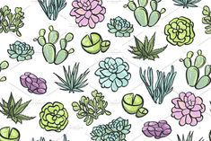 by utro_na_more on Creative Market Cute succulents illustration. by ut March Bullet Journal, Succulents Drawing, Doodle Background, Coloring Tips, Sharpie Art, Bullet Journal Inspiration, Journal Ideas, Desert Plants, Gifts For Photographers