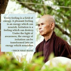 irritation can be transformed into an energy that nourishes under the light of awareness