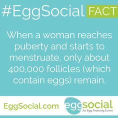 When a woman reaches puberty and starts to menstruate, only about 400,000 follicles (which contain eggs) remain.