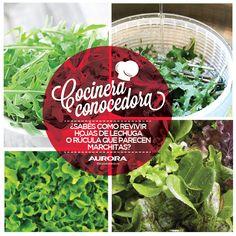 Para revivir las hojas verdes que parecen marchitas, dejalas en agua con hielo durante un rato, escurrilas y ¡listo! ¡Muy fácil!