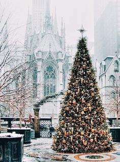 "A stunning Christmas tree outside St. Patrick's Cathedral in NYC/""O Christmas Tree! O Christmas Tree! Nyc Christmas, Christmas In The City, Christmas Scenes, Beautiful Christmas, All Things Christmas, Christmas Lights, Merry Christmas, Outdoor Christmas, Christmas Palace"
