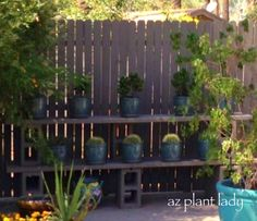 Got a Bare Fence? Create a DIY Plant Shelf - learn more from Noelle at the Birds and Blooms Blog.